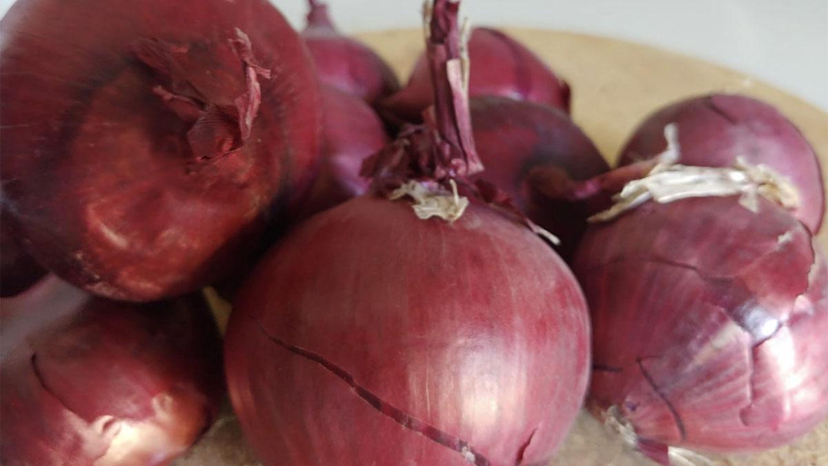 cipolla quercetina