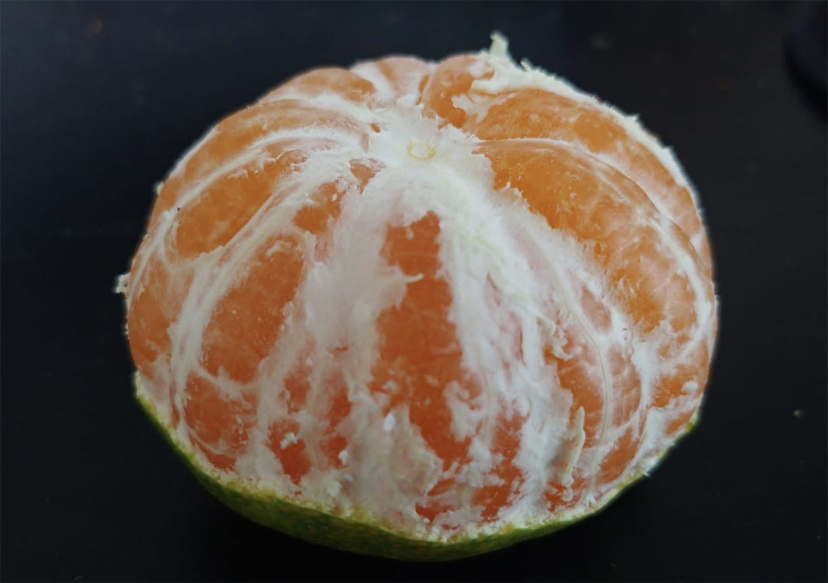 Mandarino miyagawa sbucciato