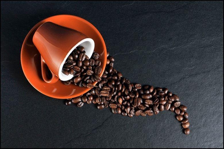 Il caffè biologico: buono e sostenibile