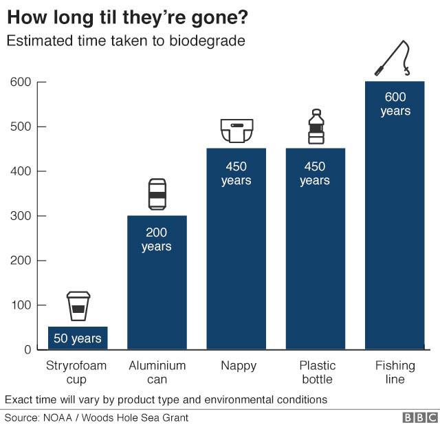 Plastica monouso nell'ambiente