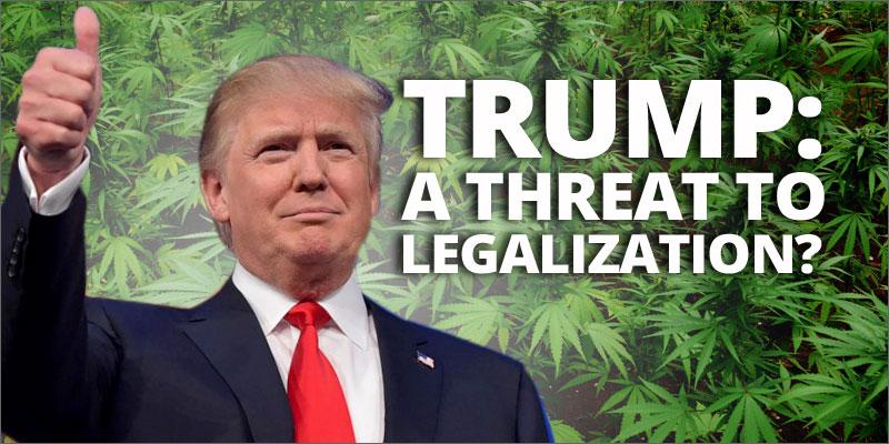 trump legalizzazione cannabis