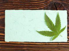 carta di canapa sostenibile