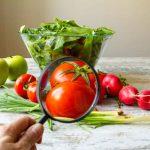 La storia degli OGM e i tentativi di introdurli in Italia