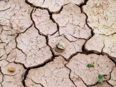 desertificazione in italia