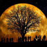 Fasi lunari, umore ed emozioni: come la fase lunare e le fasi lunari oggi ci influenzano