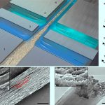 Progettato il materiale biodegradabile più forte dell'acciaio