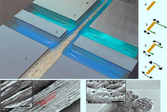 materiale biodegradabile