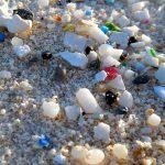 Stop microplastiche nei cosmetici: l'alternativa (italiana) è biodegradabile