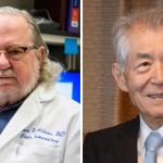 Nobel per la Medicina 2018: premiata l'immunoterapia anti-cancro