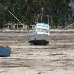 Uomo e ambiente: un terzo delle aree protette distrutte dall'attività umana